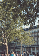 Seminarieruimtes, vergaderingen, opleiding in République